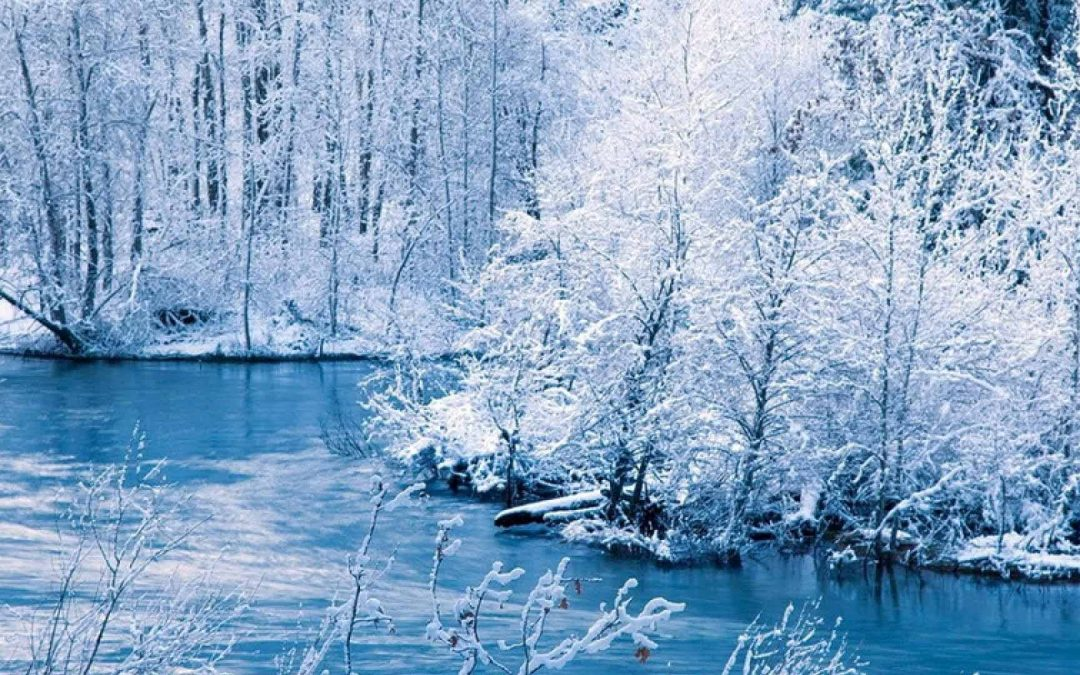 Winter Community News